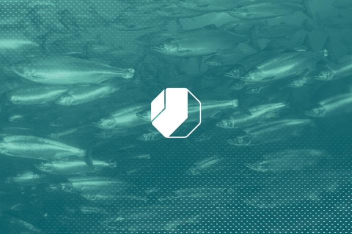Kommunikasjonsstrategi, visuell profil, nettside og film for Nofitech